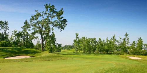Diamond Hawk Golf Course